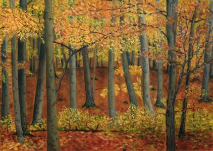 076. Bukový Podzim